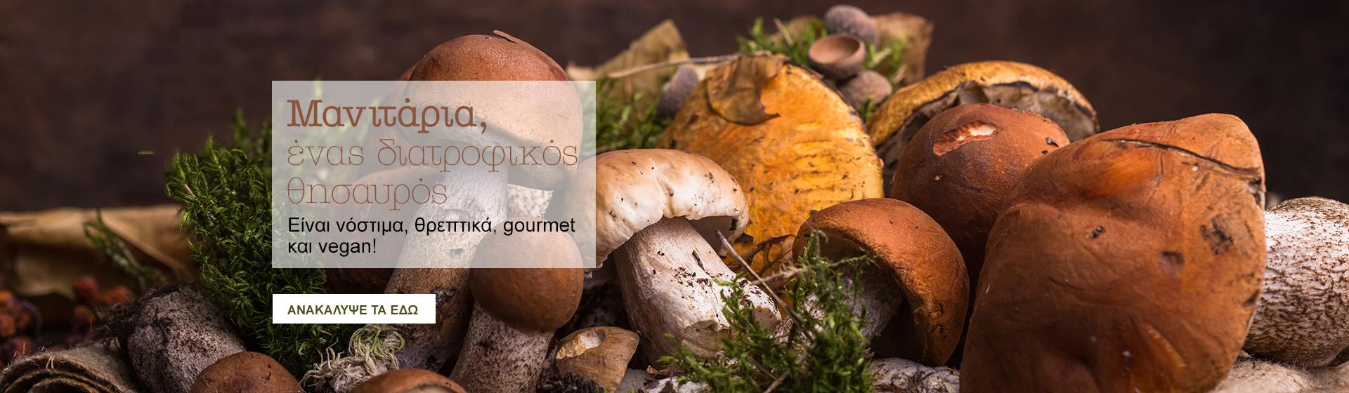 Mushrooms EL