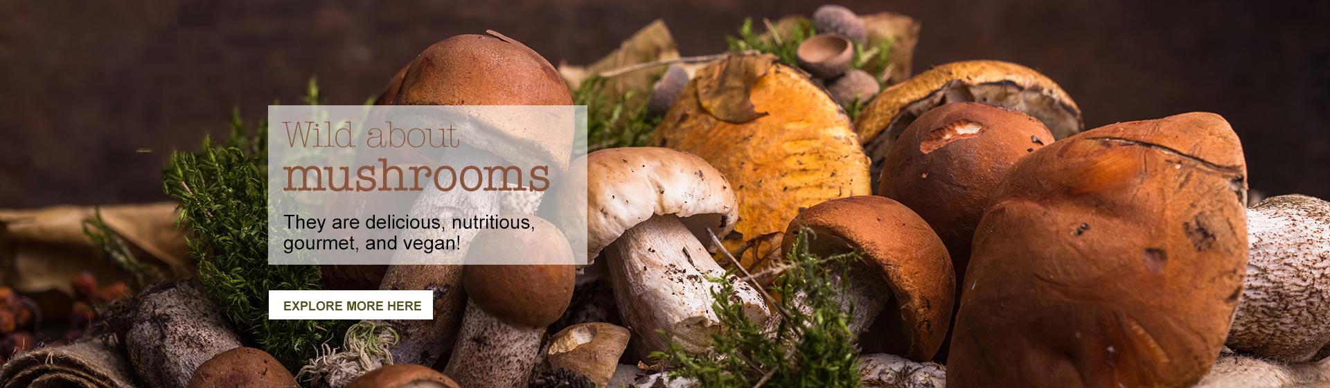 Mushrooms EN