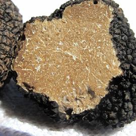 Truffle Condiment