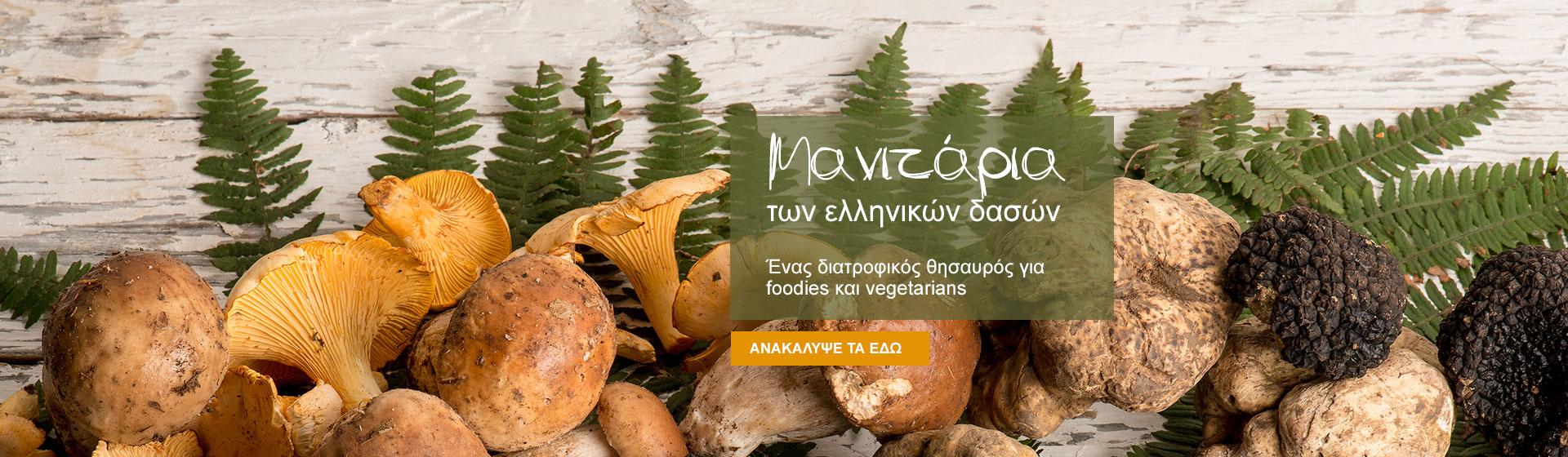 Μανιτάρια των ελληνικών δασών