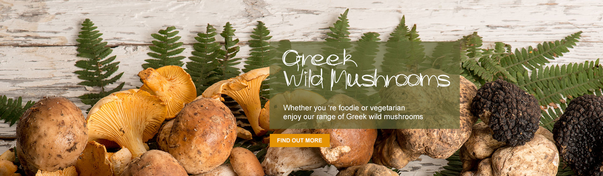 Greek Wild Mushrooms