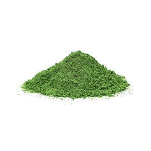 Chlorella σε Σκόνη 100g | Βιολογική Χλωρέλλα  | GreenBay