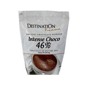 Intense Choco Ρόφημα Ζεστής Σοκολάτας σε Σκόνη 300g | Βιολογικό Vegan | Destination