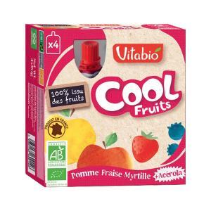 Fruit Dessert with Apple Strawberry Blueberry and Acerola 4x90gr | Organic No Added Sugar Vegan Vegetarian | Vitabio
