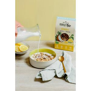 Granola με Καρύδα και Λεμόνι 250g   Ωμά Βιολογικά Δημητριακά Χωρίς Γλουτένη   Perfect Bio