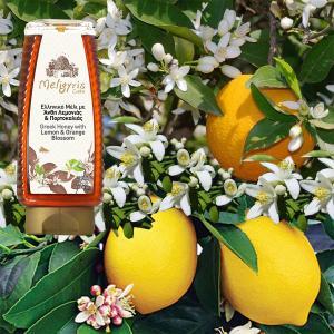 Ελληνικό Μέλι Λεμονιάς Πορτοκαλιάς Squeeze 500g | Αγνό Φυσικό Άθερμο | Μελίγυρις