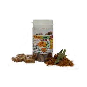 Κάψουλες Ιπποφαές 30g - Ιπποφαές Ελιξήριο