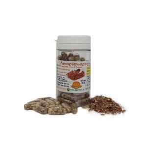 Κάψουλες Λιναρόσπορου 18.5g - Ιπποφαές Ελιξήριο
