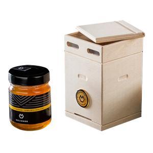 Μέλι Θυμαριού & Αγριοβοτάνων 250g Gift Box - Melimnos