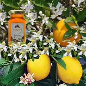 Ελληνικό Μέλι Λεμονιάς Πορτοκαλιάς | Αγνό Φυσικό Άθερμο 450g | Μελίγυρις