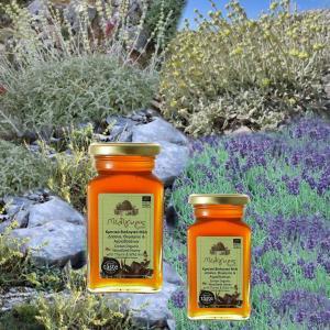 Κρητικό Μέλι Δάσους Θυμαριού Αγριοβοτάνων   Φυσικό Ελληνικό Άθερμο ΒΙΟ 450g   Μελίγυρις
